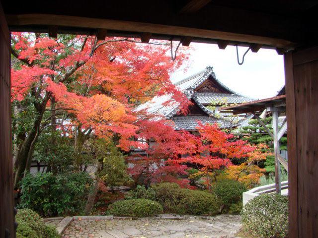 daitokuji-ryukoin